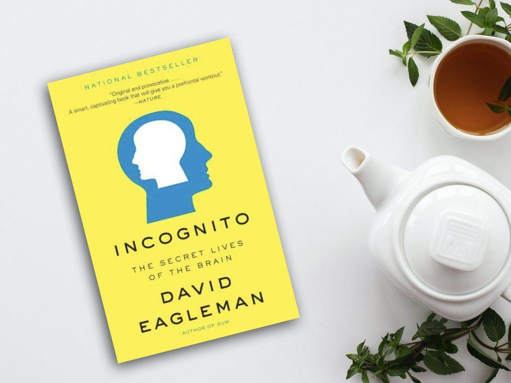Incognito - David Eagleman