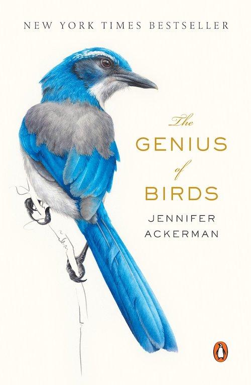 The Genius of Birds, Jennifer Ackerman