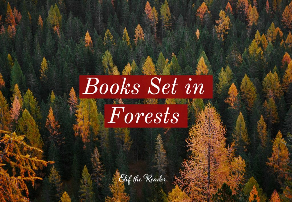 20 Best Books Set in Forests